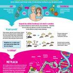 Cholina – to ona trzyma geny w ryzach