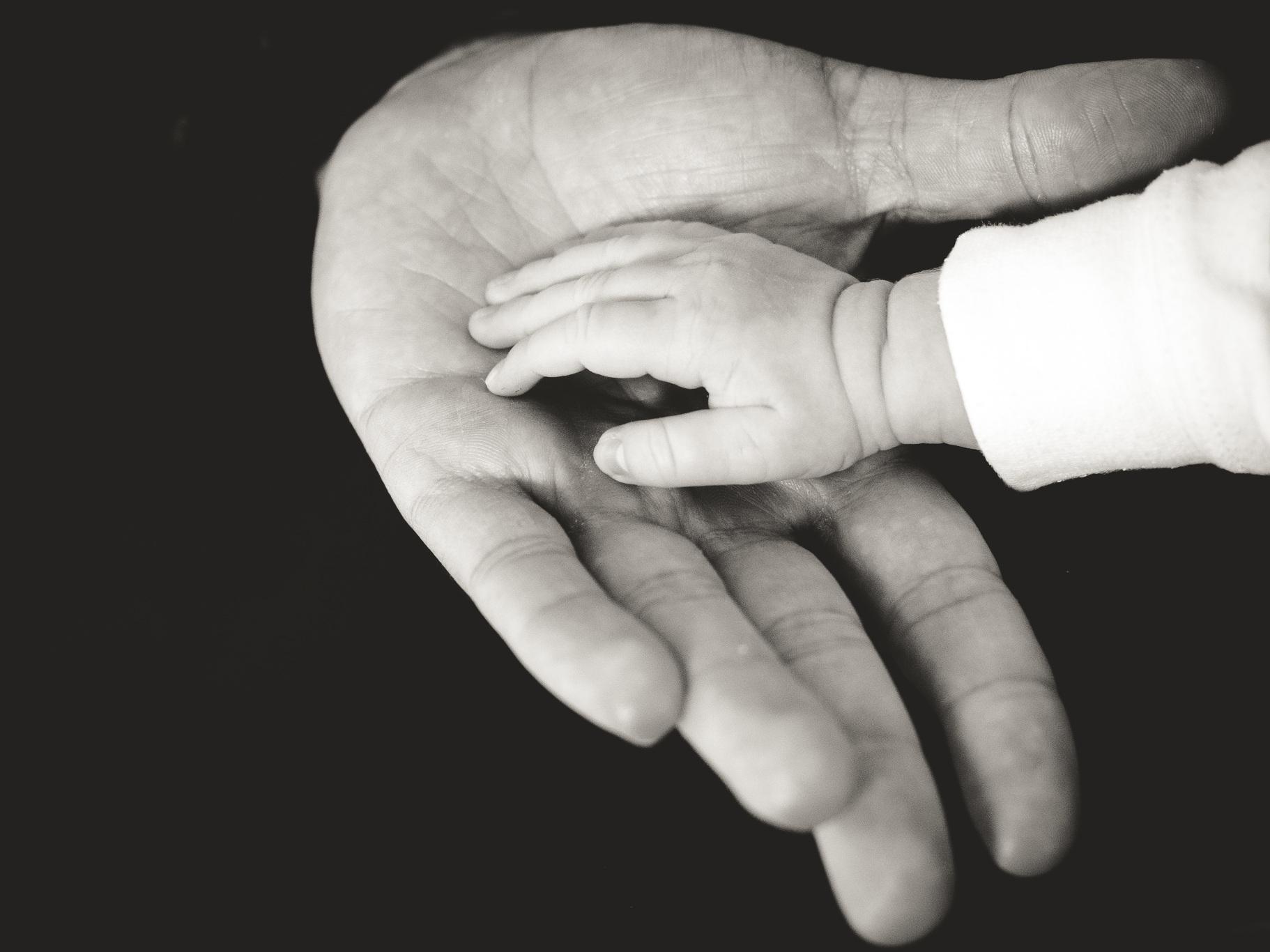 finansowanie ośrodków adopcyjnych