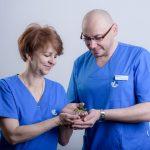 Zapłodnienie in vitro i  hodowla zarodka – jak to wygląda? Wyjaśnia embriolog