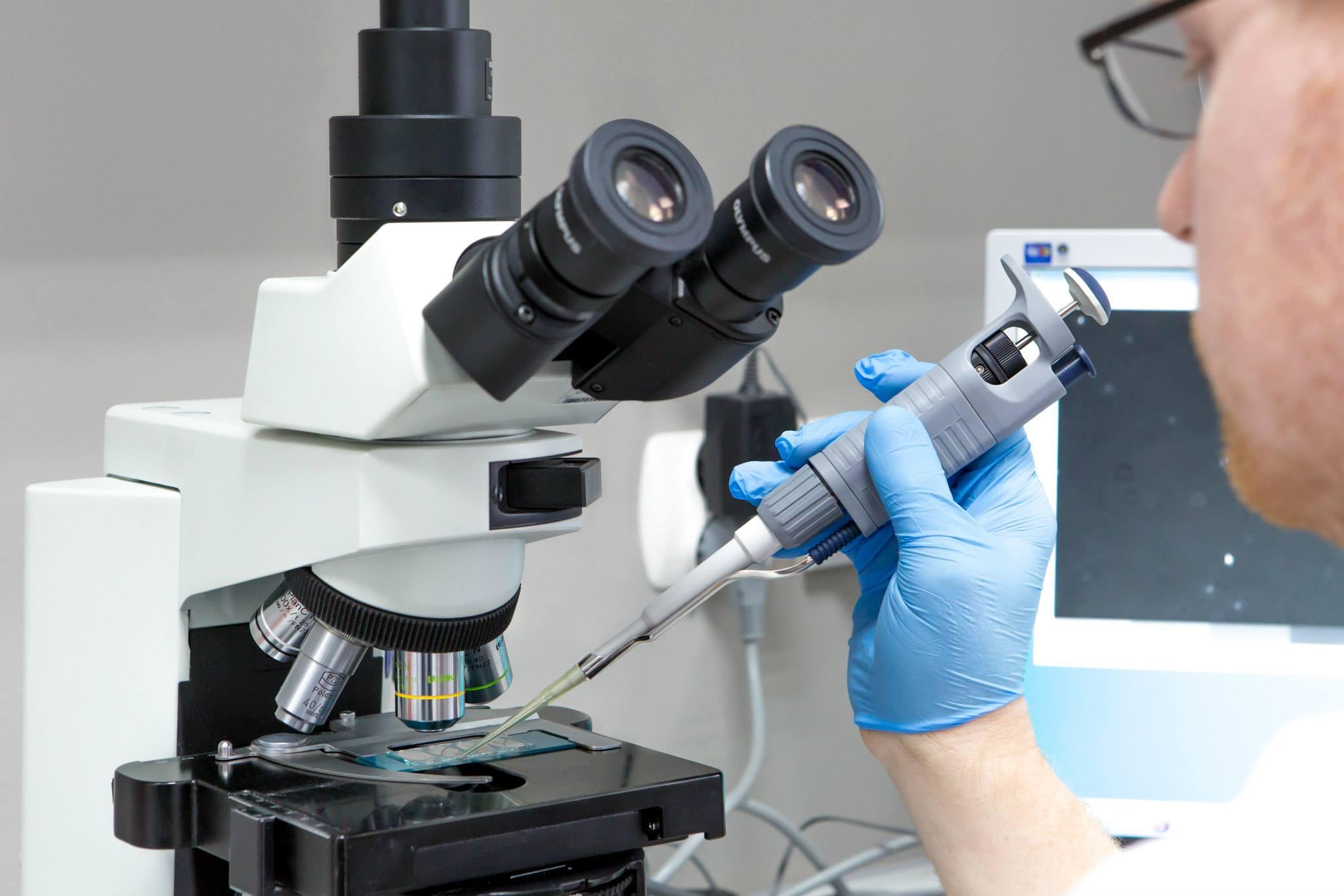 dofinansowanie in vitro we Włocławku