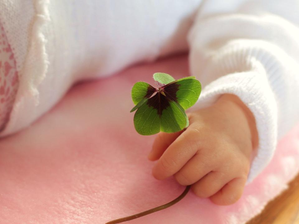 Czterolistna koniczyna w rączce noworodka /Ilustracja do tekstu: Czym są lalki reborn