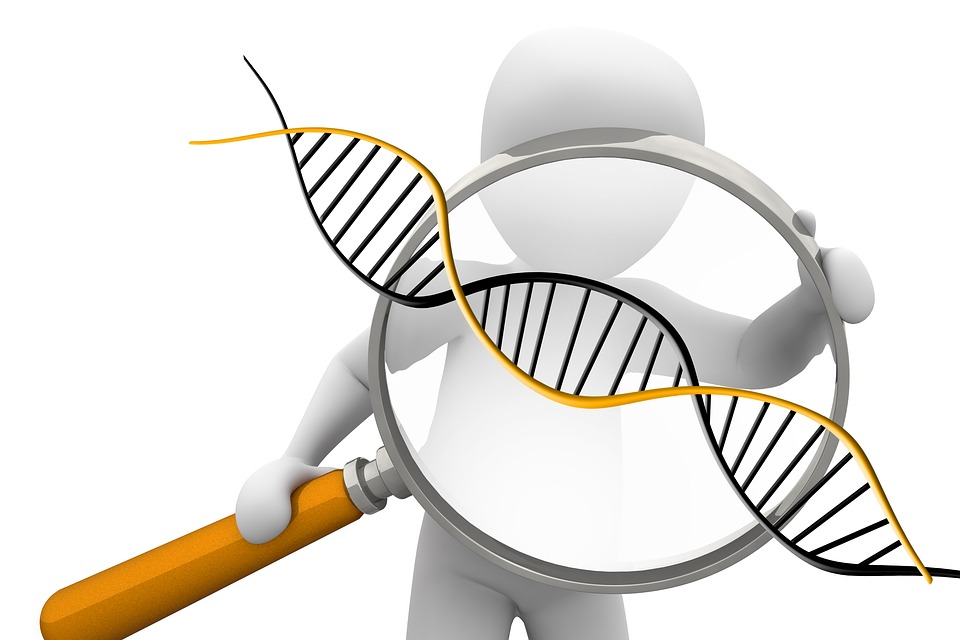 Łańcuch DNA pod lupą /Ilustracja do tekstu: Genetyk: Ograniczenia dostępu do badań prenatalnych to przemoc systemowa