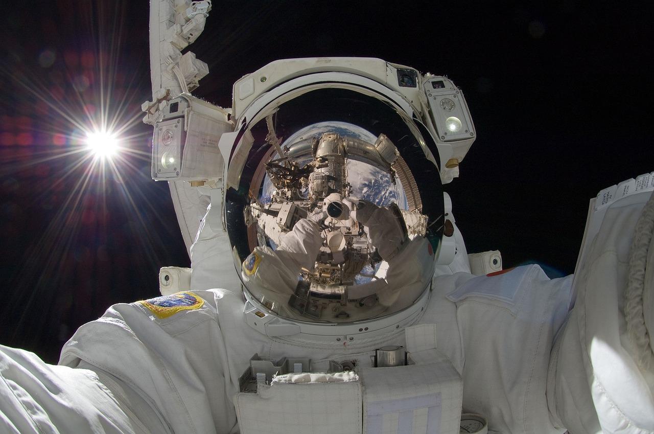 plemniki w kosmosie