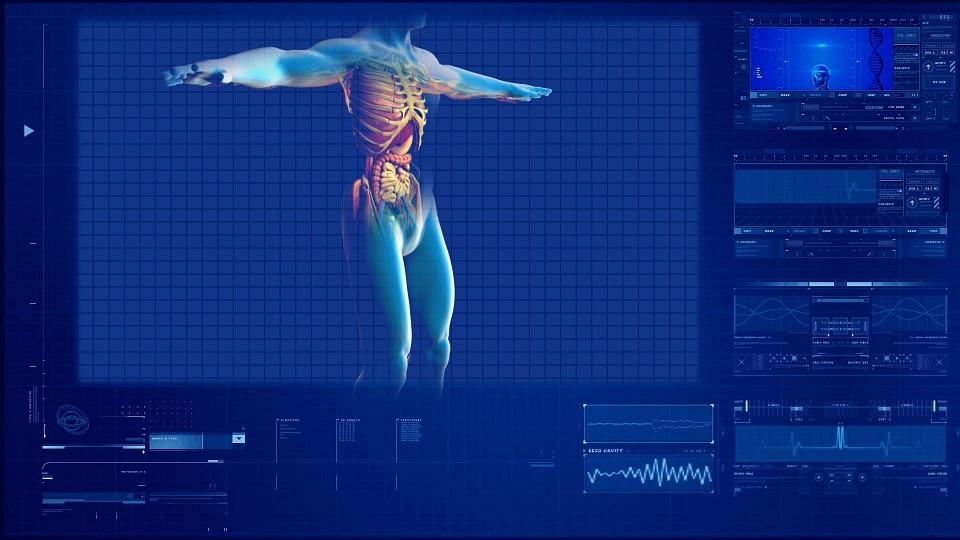 Wynik badania na monitorze /Ilustracja do tekstu: Choroby nerek a płodność