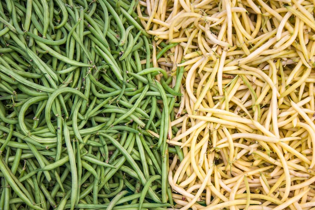 Fasolka zielona i fasolka żółta - zbliżenie na strąki /Ilustracja do tekstu: Dieta przed ciążą. Fasolka szparagowa: źródło kwasu foliowego