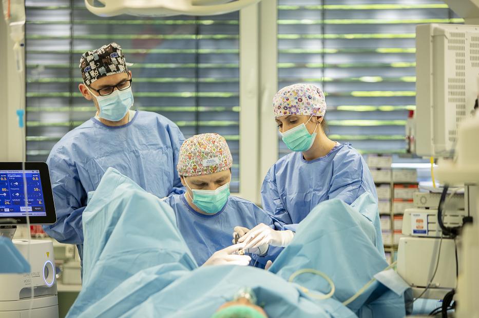 Specjaliśći ze szpitala św. Anny w Piasecznie podczas wykonywania operacji /Ilustracja do tekstu: Pionierskie zabiegi urologiczne w polskim szpitalu. Przeprowadzi je hiszpański ekspert
