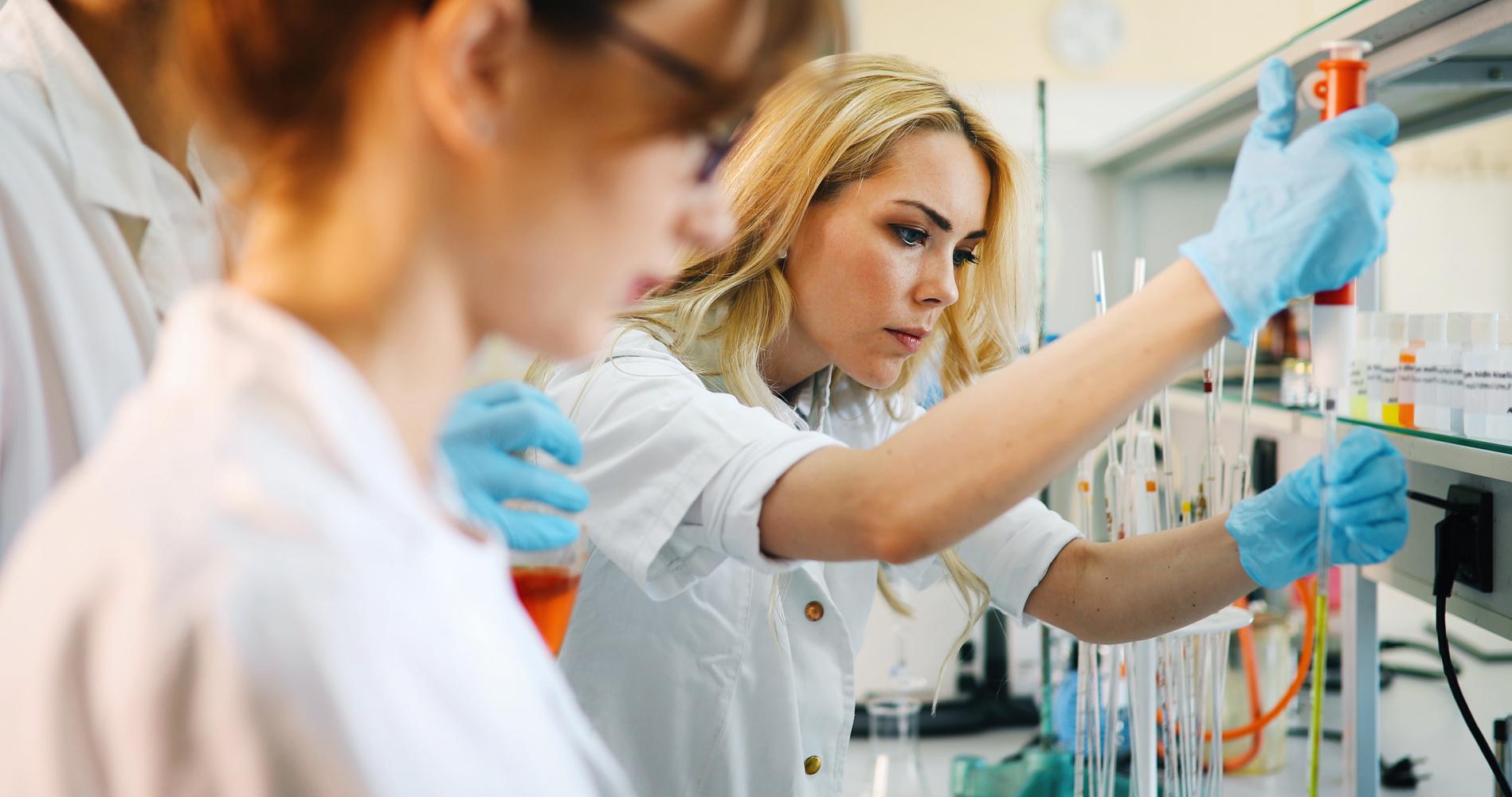 Glistnik jaskółcze ziele w leczeniu endometriozy