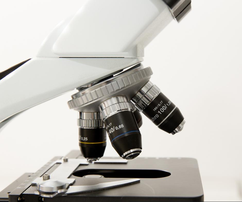 Enzym HDAC3 a niepłodność u kobiet z endometriozą