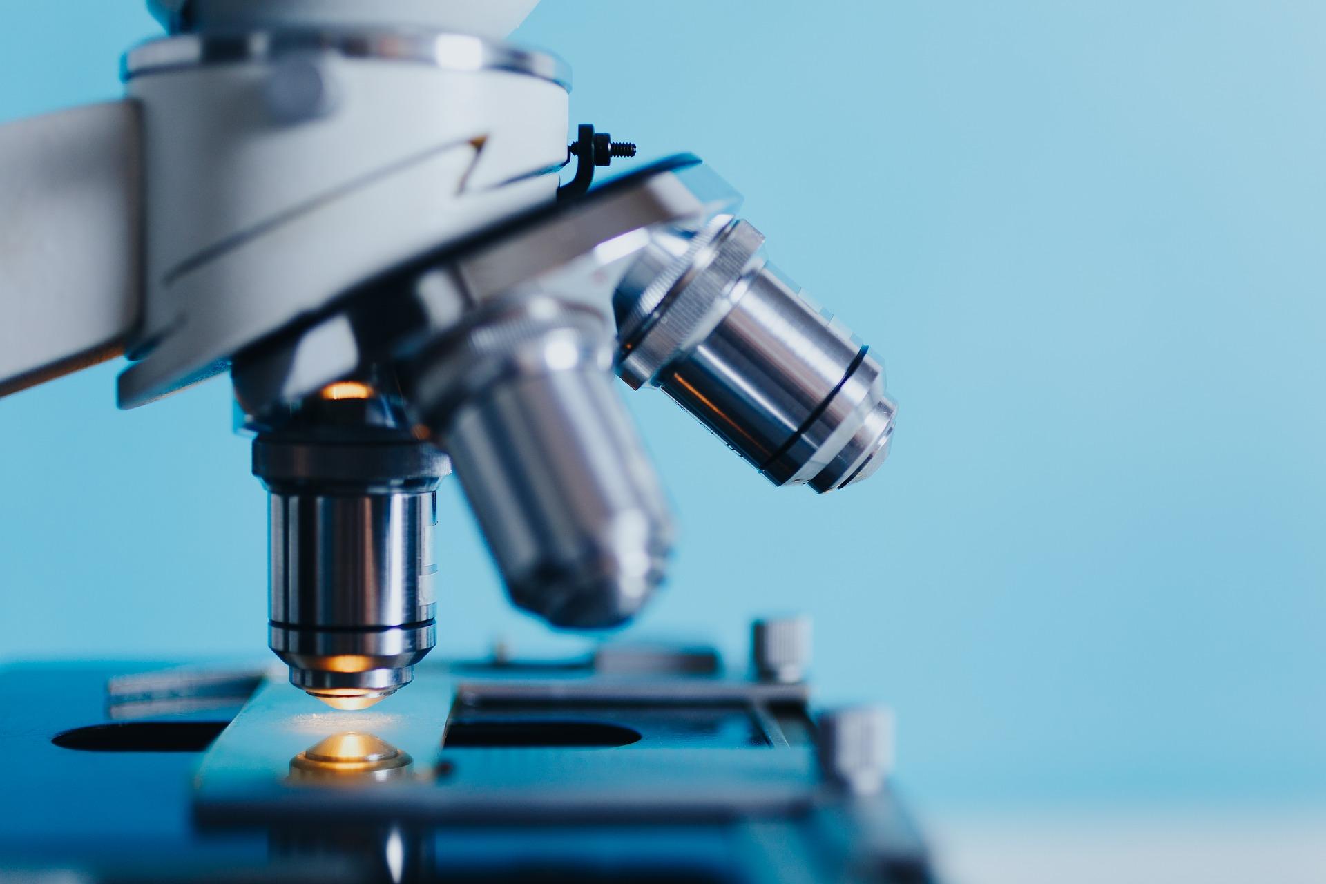 Enzym HDAC3 - jaki ma wpływ na płodność w endometriozie?