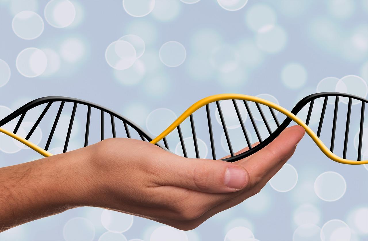 Czy genetyczne problemy z płodnością można dziedziczyć