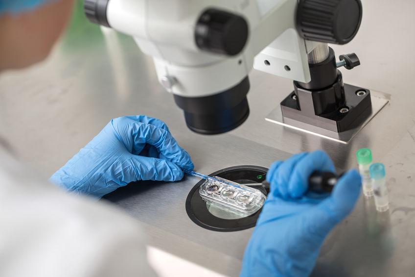 Komórki macierzyste poronionego płodu mogą dać szansę na nowe życie pacjentom w śpiączce