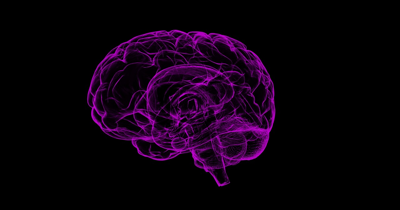 TSH matki wpływa na rozwój mózgu dziecka - wykazali naukowcy z Holandii