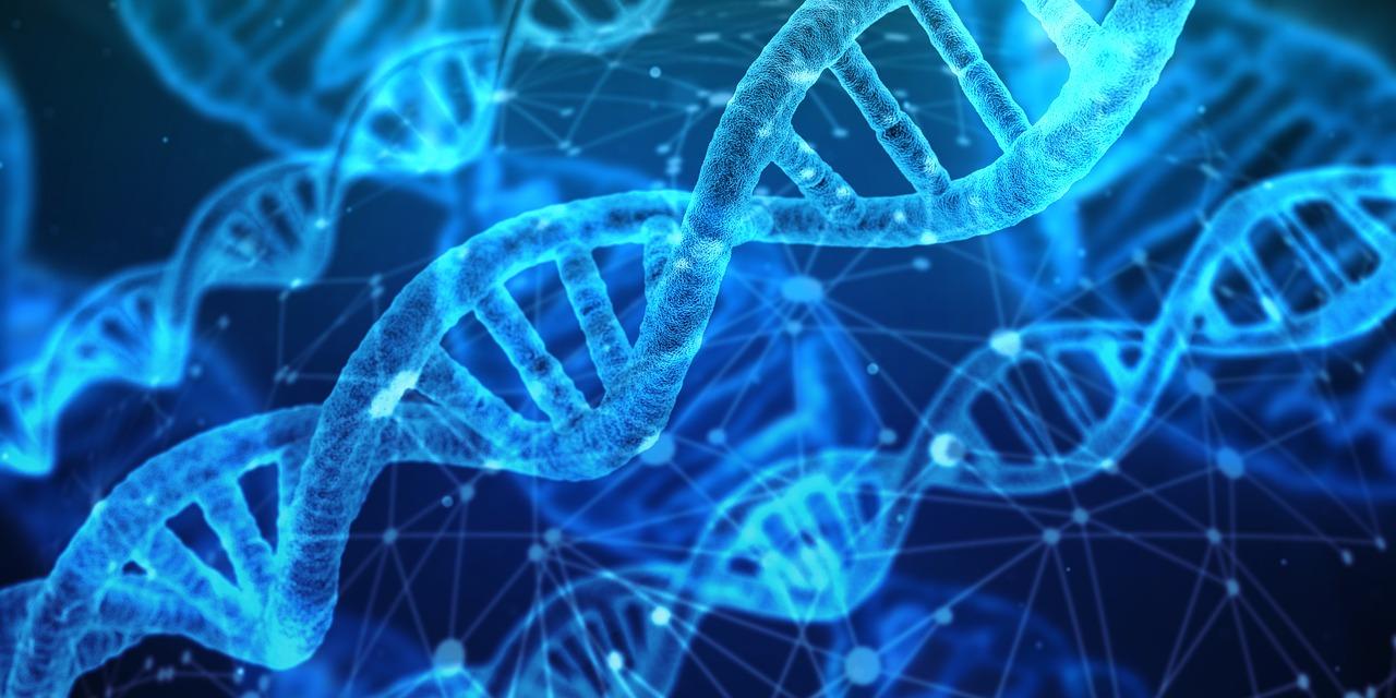 Genetyczne przyczyny poronień