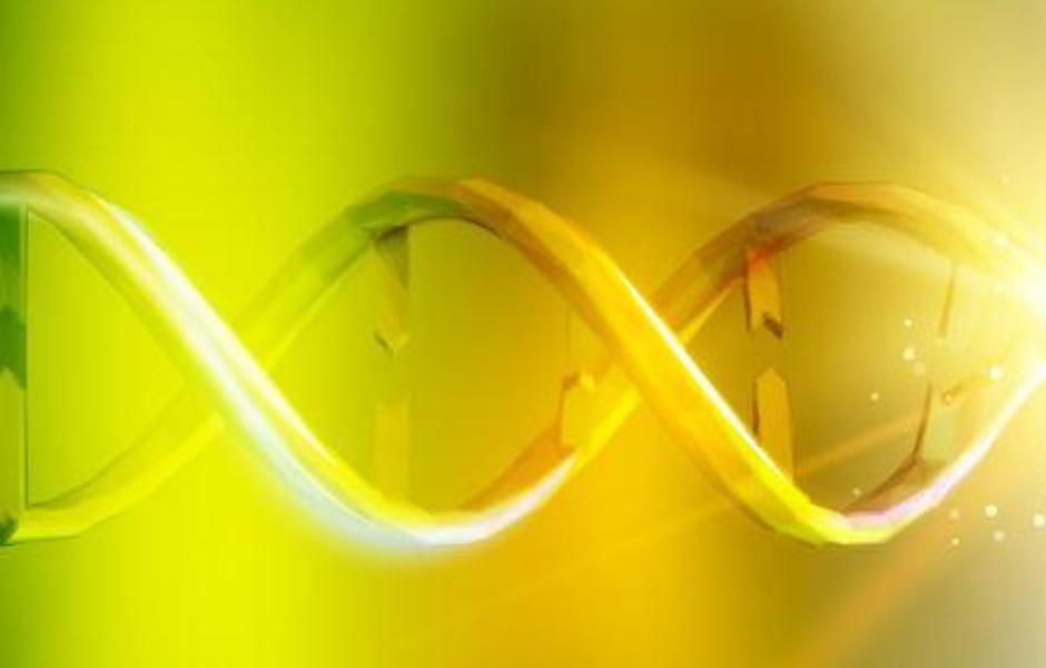 BADANIA GENETYCZNE w zapłodnieniu in vitro (IVF) z komórkami jajowymi dawczyni