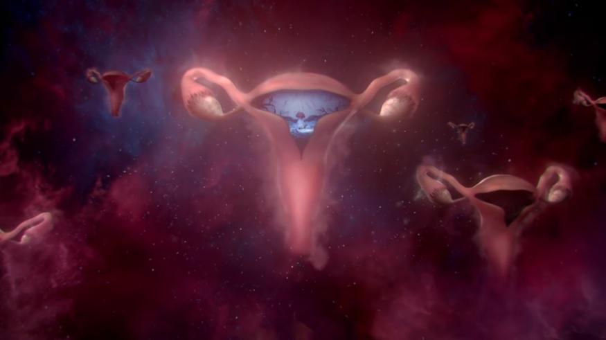 reklama womb stories